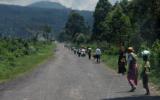 North Kivu. Road between Goma and Kiwanja<br />©La Vanguardia / Poldo Pomés