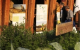Over 800.000 people visited slow food pavilion in one month